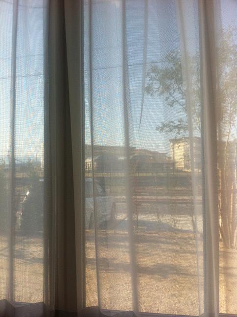 リビングから見た窓の外