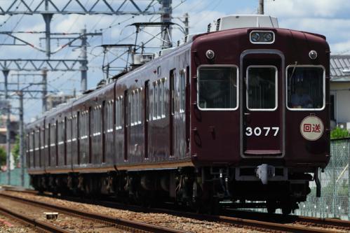 DPP_0135.jpg