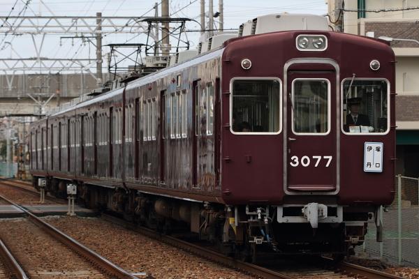DPP_0464.jpg