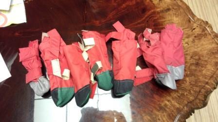リズムの靴 (2)