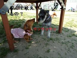 DSC05668.jpg