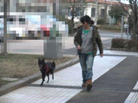 2012_0312_3.jpg