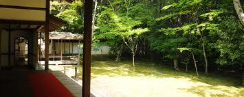 高桐院の新緑15
