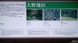 大野温泉(6)