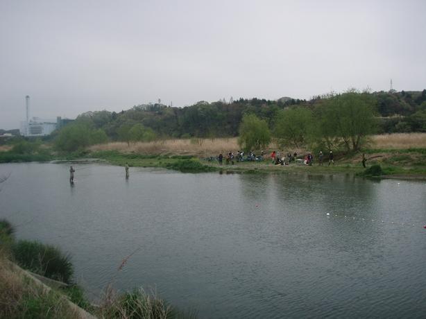 P4220012.jpg