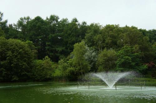 緑ヶ丘のお池・噴水