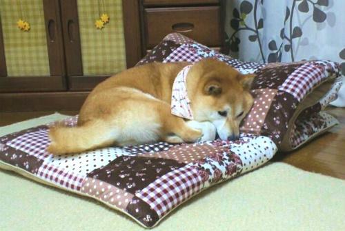 華のベッド