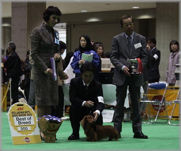 2012.4.2 マリマリ君