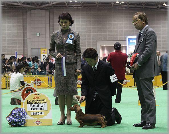 2012.4.2 ミコちゃん