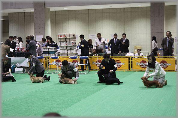 2012.4.2 ウィナー戦