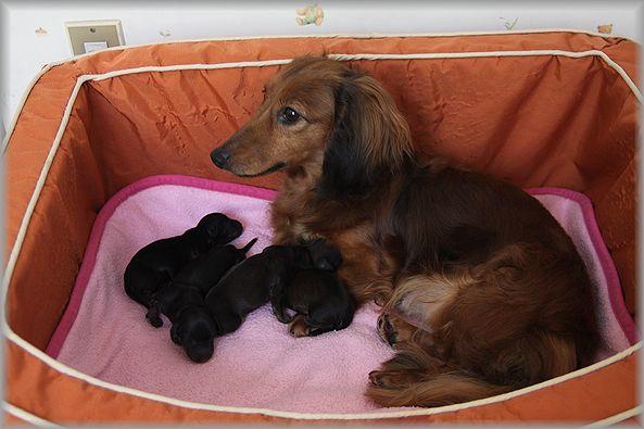 2012.5.28 出産