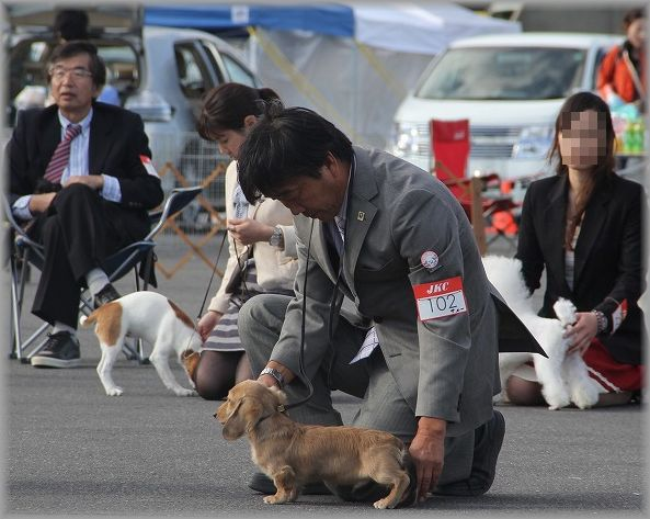 2012.10.27サン君6