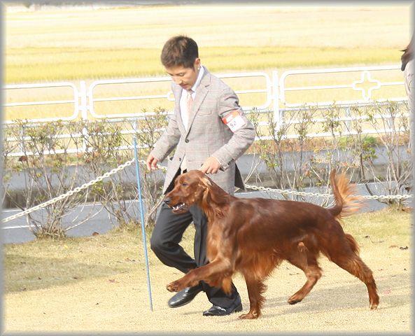 2012.12.1 ロイド君