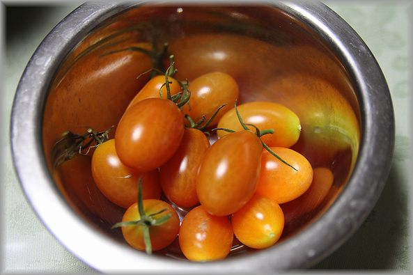 2012.12.9ミニトマト