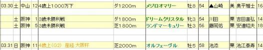 2013033031JRA発表