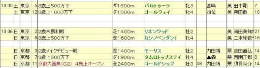 2013100506想定