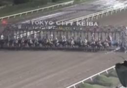 20131002 グランディオーソくん圧勝^^・・・1