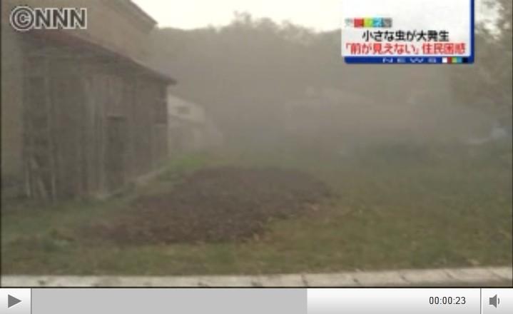 2012-11-12hokkaido.jpg
