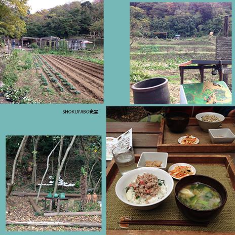 shokuyabo食堂