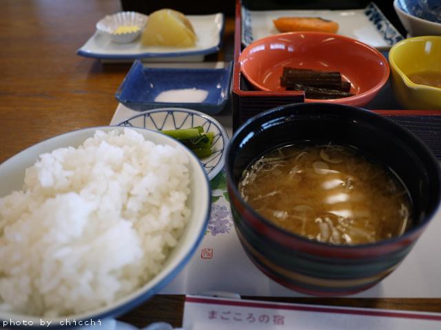 suwakoen-27.jpg