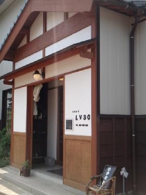 LV30a