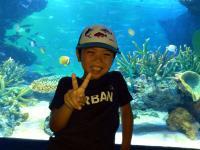 サンシャイン水族館3