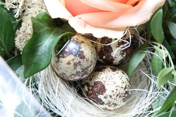 eggs_20130401220257.jpg