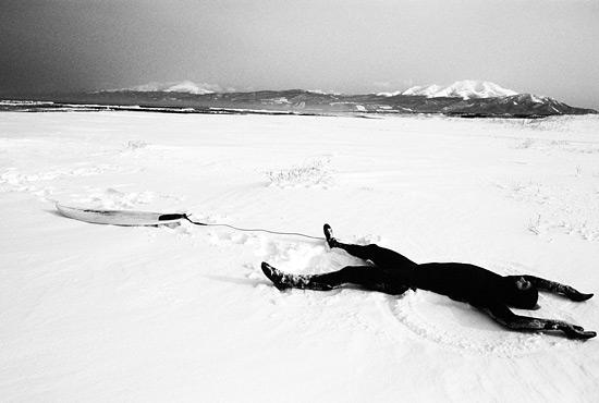 dan-malloy-snow-angel-joe-curren-01.jpg