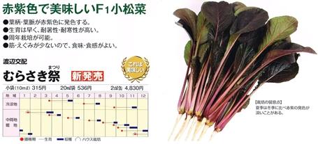 渡辺農・むらさき祭20130705_0000_s