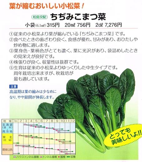 渡辺・ちぢみ小松菜20130705_0000_s
