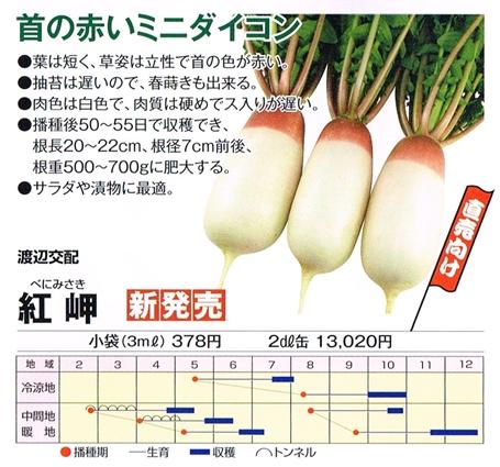 渡辺農・紅岬20130705_0000_s