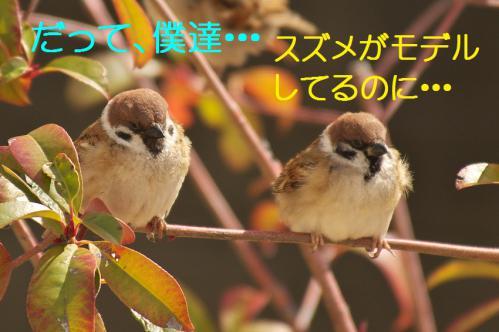 020_20130223221556.jpg