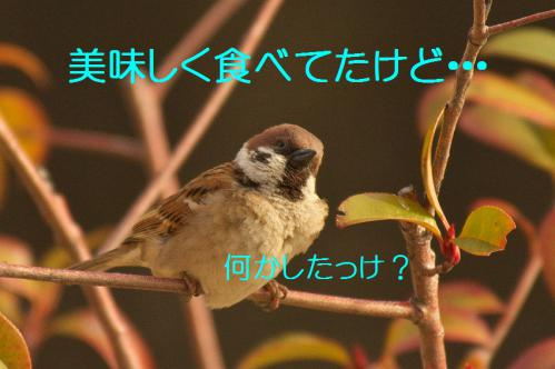 020_20130311210359.jpg