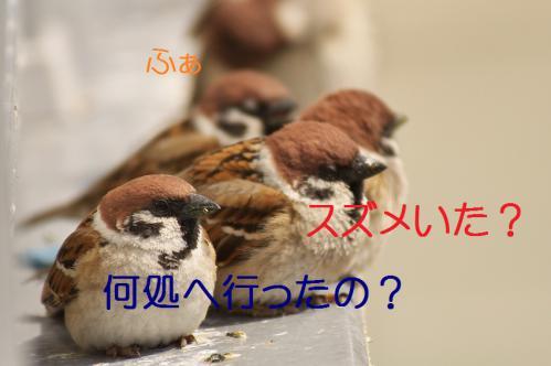 020_20130312194540.jpg