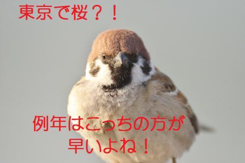 020_20130317211834.jpg