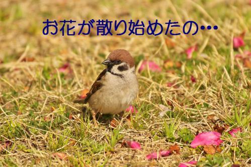 020_20130319203412.jpg