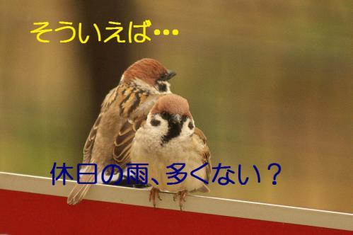 020_20130320211012.jpg