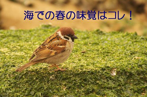 020_20130322231121.jpg