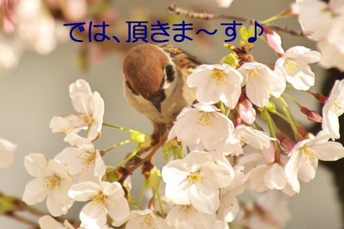 020_20130330214647.jpg