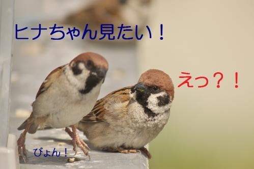 020_20130428194642.jpg