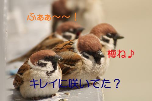 030_20130312194542.jpg