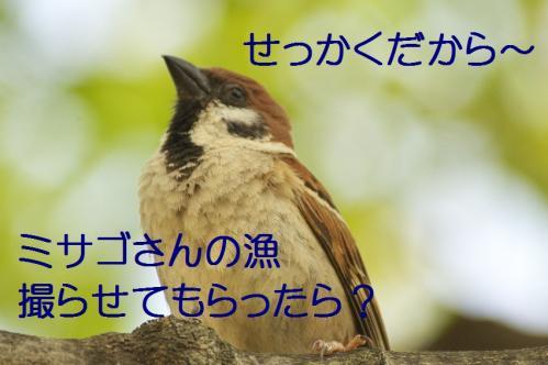 030_20130527215238.jpg
