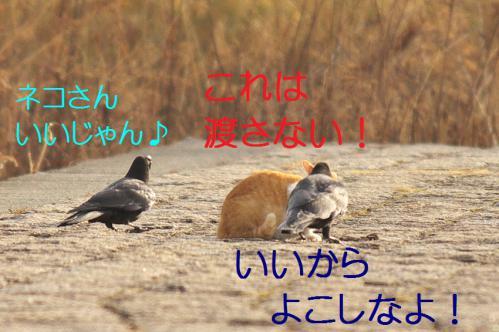 040_20130316193933.jpg