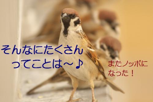 060_20130308225102.jpg