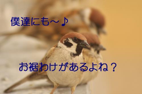 070_20130308225105.jpg