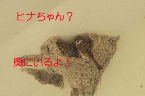 070_20130430194337.jpg