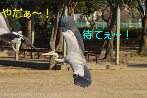 090_20130309224456.jpg