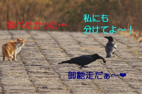 090_20130316194020.jpg