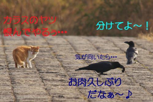 100_20130316194023.jpg