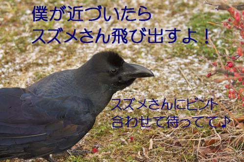 120_20130307204617.jpg